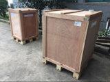 Máquina de fatura de gelo para fazer o gelo (GRT-LB210S)
