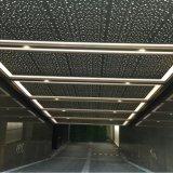 Потолок высокого качества специальный Perforated с звукоизоляционным материалом