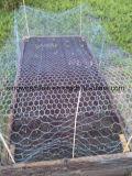 Galvano galvanisierte sechseckige Draht-Filetarbeit für Geflügelfarmen und Vogel-Rahmen mit SGS