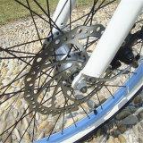 좋은 가격 최신 판매 전기 바닷가 자전거 (RSEB-1215)