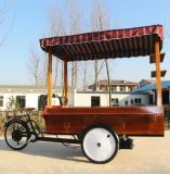 Tipo elétrico carro móvel do gelado do triciclo do gelado da bicicleta do café do suco do congelador da bebida fria para a venda
