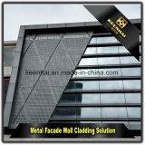 정면 클래딩 관통되는 알루미늄 옥외 장식적인 벽면