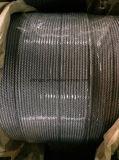 Горяч-Окунутая гальванизированная веревочка стального провода 6*19s+FC