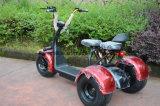 二重シートが付いているCitycoco Harleyのスクーター