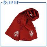 Les écharpes des femmes populaires de longue mode chaude de type