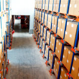 Radio Shuttle Racking System para Freezed Warehouse