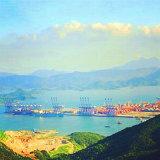 Frete de mar de Shenzhen China a Hamburgo Alemanha