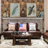 ホーム家具(AS838)のための米国式の木の円形のコーヒーテーブル