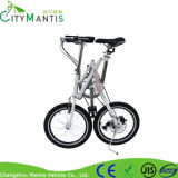 スポーツ山の炭素鋼の折るバイク