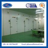 Weg im Gefriermaschine-Raum industriell, industrielles Kühlraum-Gefriermaschine-System,