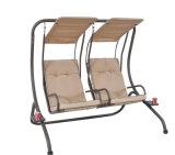 Двойной стул сада воссоздания салона