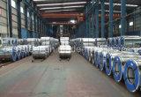 Cor impressa Steelcoil, chapa de aço revestida Prepainted de Aluzinc