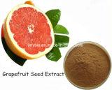 Выдержка семени грейпфрута нарингина 98% свободных радикалов продувкой высокого качества