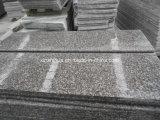 Fliesen des Granit-G664/Granit-Platten/Granit-Jobstepps/Countertop