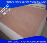 Heißer Verkauf! ! Hochwertiges 15mm Okoume Furnierholz für Möbel-und Verpackungs-Gebrauch