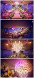 De goedkope Stoelen van de Huur van het Banket van het Huwelijk van de Stoelen van Chiavari van het Metaal