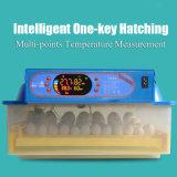 Солнечная приведенная в действие машина Hatcher автоматического миниого инкубатора 48 яичек малая