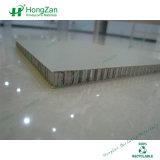 """Panneau """"sandwich"""" de fibre de verre de surface approximative pour le dos de mur en pierre"""