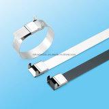 Type de taille Ss PVC Coated Cable Tie avec L Buckle Clip