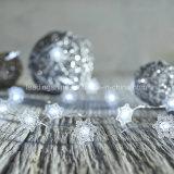 Weißes LED Mikrozeichenkette-Licht der Winter-Schnee-Flocken-Weihnachtsgeschenk-