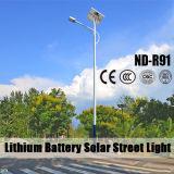 Lumières solaires extérieures de lampe en aluminium de DEL avec le lampadaire (ND-R91)