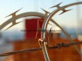 Alambre de púas del hierro de la maquinilla de afeitar/alambre acordeón del hierro