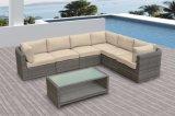 Patio al aire libre de mimbre muebles de jardín Sofá de ratán Medi Salón Set (J587)