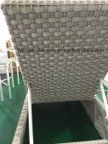 De nieuwe Rotan van het Ontwerp voor Chaise het OpenluchtMeubilair van de Zitkamer (tg-6008)