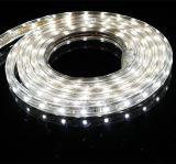 SMD3528 60LEDs/M는 120LEDs/M AC230V 백색 유연한 LED 지구를 데운다