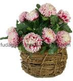 Цветочный горшок сада ротанга декоративный круглый