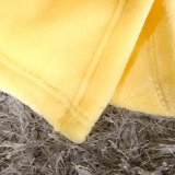 Hight Qualidade Adulto Mink Flannel Coral Fleece Blanket for Bed