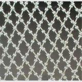 電流を通されたかみそりの有刺鉄線かアコーディオン式の有刺鉄線