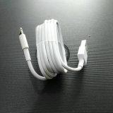iPhone를 위한 IC 칩을%s 가진 USB 케이블 고유