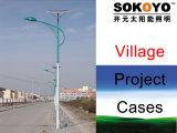 Réverbères solaires approuvés de la CE LED avec des cas de projet de Polonais-Village de 6m