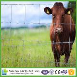 Rete metallica di recinzione ad alta resistenza galvanizzata per l'azienda agricola