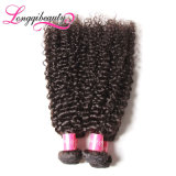 Волосы хорошего Afro рынка естественного черного Kinky навальные