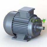 0.5kw - generador de imán permanente síncrono trifásico inferior del mecanismo impulsor directo de la CA de la revolución por minuto 5000kw