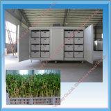 Máquina Growing automática del brote de haba Ht-Dyj200