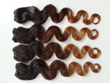 等級5A Ombre Color Body WaveブラジルのVirgin Human Hair Weave (HW01)