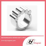 Hina NdFeB Neodym des Magnet-Hersteller-freies BeispielN50