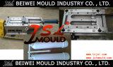 Inline Filtro de agua de plástico de vivienda fabricante del molde