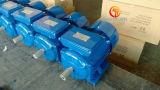 Motor da fase monofásica (1.5kW-2HP, 3000rpm, de ferro de molde carcaça)