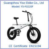 En15194 pliant la graisse électrique de vélo