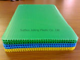 Pp Corflute Sheet voor Printing en Packing