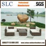 Sofá de la rota/sofá de la esquina de mimbre/sofá del salón (SC-B9503)