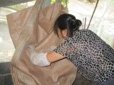 Exporter vers la Corée le sac en bloc de 1 tonne pp