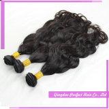 Het maagdelijke Haar van het Haar van het Menselijke Haar Onverwerkte Purpere Braziliaanse Wevende
