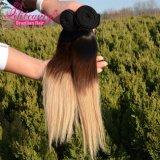 Tom brasileiro das extensões três do cabelo humano de Ombre Remy do cabelo do Virgin