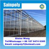 Serre van het Glas van de landbouw de Commerciële Plantaardige Gebruikte