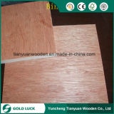 18mm Herr Glue Commercial Plywood